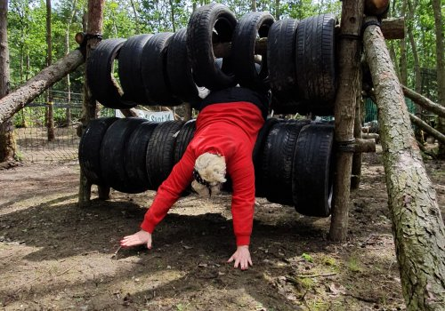 Assault Course Experience