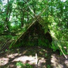 bushcraft-courses-shelter-building.jpg