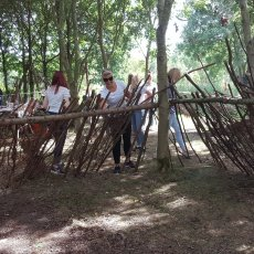 how to make a shelter in the woodland