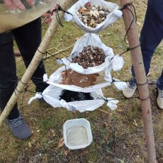 water purification experience bushcraft