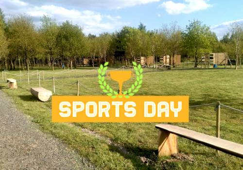 Sports Day Activities