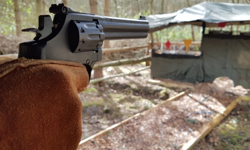 Air Rifle, Pistol Shooting and Clay Shooting £65