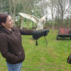 falconry experience hen party
